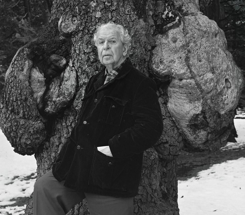 Clanence John Laughlin - Yosemite 1975