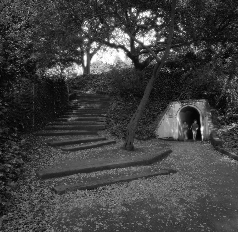 Near the Rose Garden - Berkley 2005